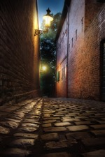 Preview iPhone wallpaper Night, street, path, road lamps