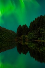Preview iPhone wallpaper Northern lights, trees, lake, water reflection, night