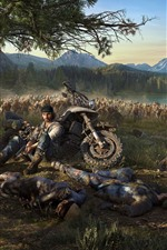 Preview iPhone wallpaper PS4 game, Days Gone