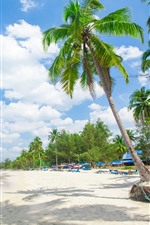 Preview iPhone wallpaper Palm trees, resort, beach, tropical, sea, people, summer