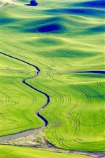Preview iPhone wallpaper Palouse, beautiful green fields, Washington, USA