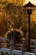 iPhone fondos de pantalla Parque, arboles, cerca, lampara