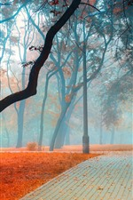 Preview iPhone wallpaper Park, trees, fog, road, leaves, morning