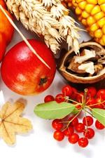 Preview iPhone wallpaper Pumpkin, corn, wheat, berries, nuts