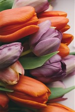 Preview iPhone wallpaper Purple and orange tulips, bouquet