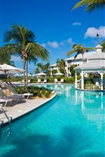 Resort, palm trees, pool, chairs, blue sky, tropical