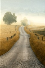 Preview iPhone wallpaper Road, fence, grass, trees, fog, morning