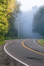 Preview iPhone wallpaper Road, trees, power lines, fog, morning