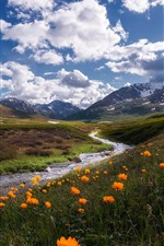 Preview iPhone wallpaper Russia, Altay, mountains, river, clouds, wildflowers