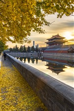 Preview iPhone wallpaper Shenwumen, trees, yellow leaves, river, autumn, Beijing, China