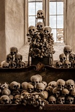Preview iPhone wallpaper Skulls, horror
