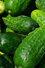 Some cucumbers, green vegetable