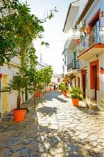 Espanha, estepona, rua, casas, árvores, sol