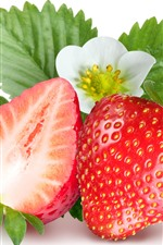 Strawberry and flower, white background