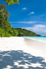 Preview iPhone wallpaper Summer, tropical, beach, sea, palm trees, shadow