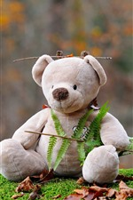 Preview iPhone wallpaper Teddy bear, toy, fern leaves