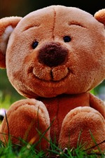 Preview iPhone wallpaper Teddy bear, toy, meadow