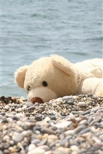 Toy bear, shore, stones, river