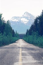 Preview iPhone wallpaper Trees, road, mountain, path