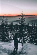 Trees, snow, winter, person, dusk