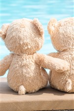 Preview iPhone wallpaper Two teddy bears, toy, friends