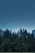 USA, Yosemite National Park, trees, mountains, sky, dusk