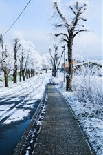 Preview iPhone wallpaper Winter, snow, road, house, trees, city