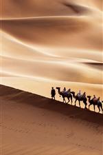 Preview iPhone wallpaper Xinjiang, Kumtag Desert, camel