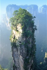 Preview iPhone wallpaper Zhangjiajie, cliff, rocks, bushes, China