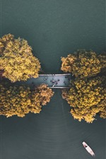 Preview iPhone wallpaper Autumn, trees, road, top view, river