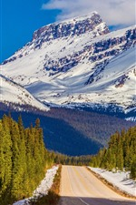 Preview iPhone wallpaper Banff National Park, Canada, trees, road, mountain, snow