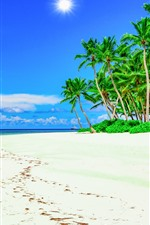 Preview iPhone wallpaper Beach, palm trees, blue sky, summer, tropical