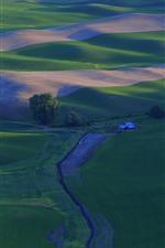 Hermoso campo, campos de trigo verde, Palouse, EE.UU.