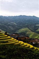 Preview iPhone wallpaper Beautiful countryside, morning, fog, Longji rice terraces, Guilin, China