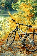 Bicicleta, mesa, árvores, folhas, outono
