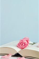 iPhone fondos de pantalla Libro y rosas rosadas, pétalos.