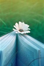 Preview iPhone wallpaper Book, white flower, green grass