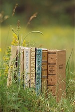Books, grass, wildflowers