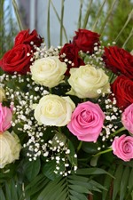 Bouquet, flowers, white, pink, red roses