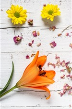 Preview iPhone wallpaper Chamomile, orange lily, petals, wood board