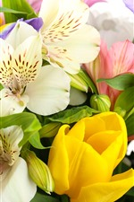 Preview iPhone wallpaper Colorful flowers, lilies, irises, tulips