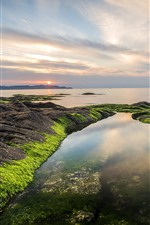 Preview iPhone wallpaper Dalian, China, sea, sunset, rocks, moss