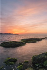 Dalian, sea, coast, stones, moss, sunset
