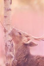 Preview iPhone wallpaper Deer, tree, pink style