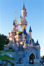 Preview iPhone wallpaper Disneyland, castle