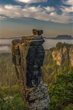 Preview iPhone wallpaper Germany, Saxon Switzerland, mountains, rocks, trees, clouds, fog, morning