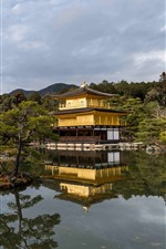Preview iPhone wallpaper Golden Pavilion Temple, pond, trees, Japan