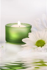 Velas verdes, llama, crisantemo blanco, agua.