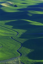 Green wheat fields, river, beautiful scenery, Palouse, USA