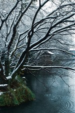 Preview iPhone wallpaper Hangzhou, China, winter, snow, park, trees, pond